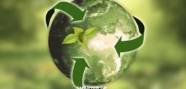 Rialzarsi dopo la pandemia con lo sviluppo sostenibile